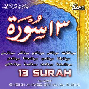 Sheikh Ahmed Bin Ali Al Ajami 歌手頭像