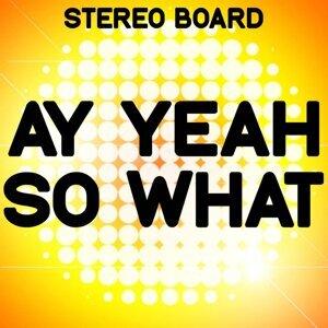 Stereo Board アーティスト写真