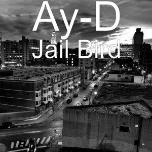 Ay-D 歌手頭像