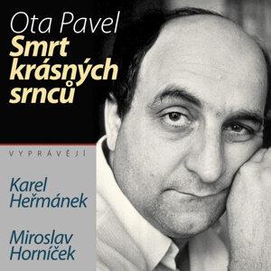 Karel Heřmánek 歌手頭像