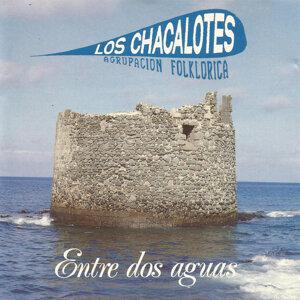 Agrupación Folklórica los Chacalotes 歌手頭像