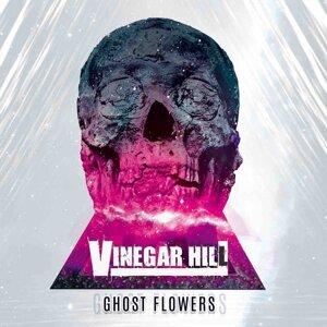 Vinegar Hill Artist photo