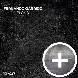 Fernando Garrido 歌手頭像