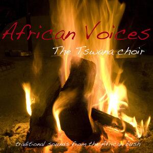 The Tswana Choir 歌手頭像