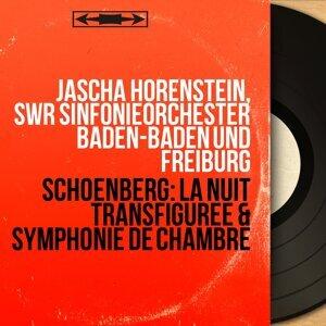 Jascha Horenstein, SWR Sinfonieorchester Baden-Baden und Freiburg 歌手頭像