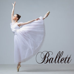 Die Ballett 歌手頭像