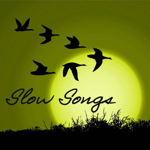 Slow Songs Relax 歌手頭像