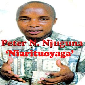 Peter N. Njuguna 歌手頭像