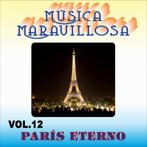 Orquesta Música Maravillosa アーティスト写真