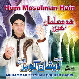 Muhammad Zeeshan Gouhar Qadri 歌手頭像
