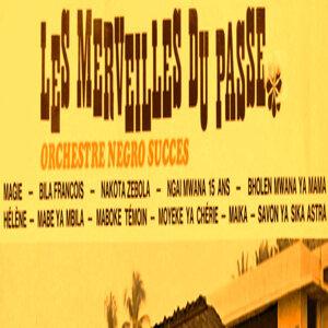 Orchestre Negro Succes 歌手頭像