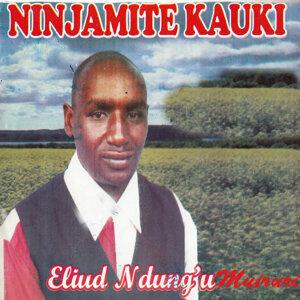 Eliud Ngungu Muiruri 歌手頭像