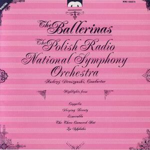 The Polish Radio National Symphony Orchestra, Andrej Straszynski アーティスト写真
