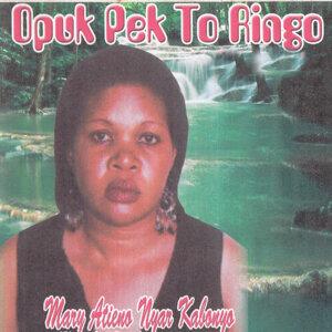 Mary Otieno Nyar Kabonyo 歌手頭像