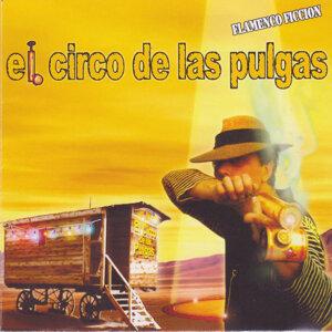 Flamenco Ficcion 歌手頭像