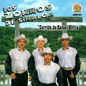 Los Zorros De Sinaloa アーティスト写真
