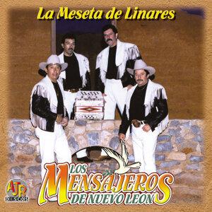 Los Mensajeros De Nuevo Leon 歌手頭像
