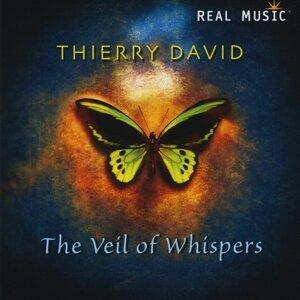 Thierry David 歌手頭像