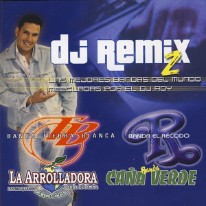 DJ Remix 2 歌手頭像