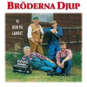 Broderna Djup 歌手頭像