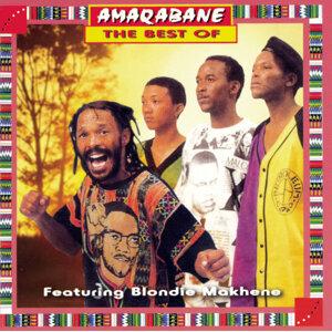 Amaqabane 歌手頭像