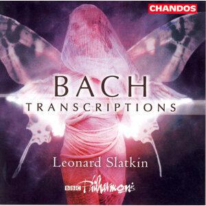 Leonard Slatkin (史拉特金) 歌手頭像