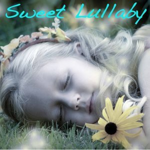 Sweet Lullaby 歌手頭像