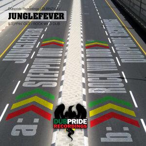 Junglefever アーティスト写真
