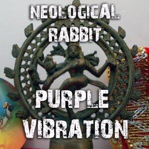 Neological Rabbit 歌手頭像