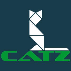 Catz v Ibi Tijani アーティスト写真