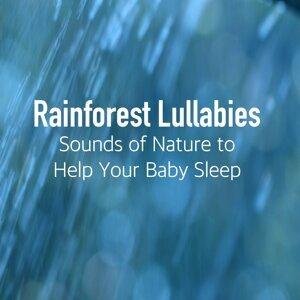 Rainforest Music Lullabies Ensemble 歌手頭像