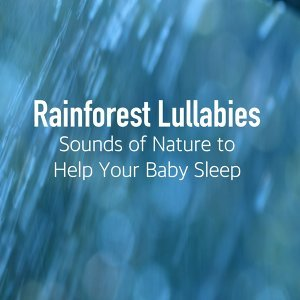 Rainforest Music Lullabies Ensemble