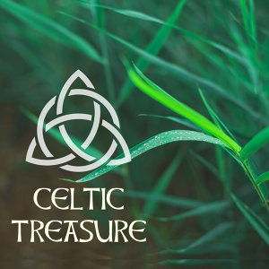 Celtic Harp Soundscapes
