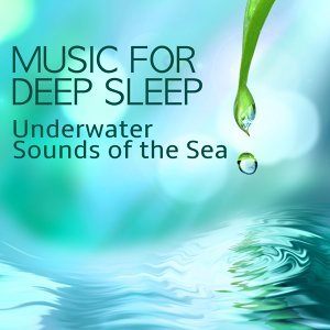 Underwater Sounds Specialists