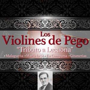 Los Violines de Pego