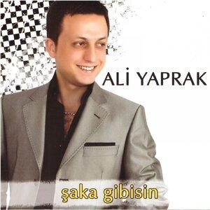 Ali Yaprak アーティスト写真