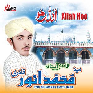 Syed Muhammad Anwer Qadri 歌手頭像