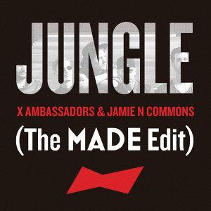 X Ambassadors,Jamie N Commons