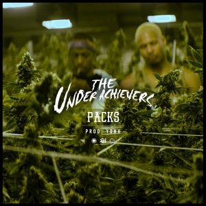The Underachievers Artist photo