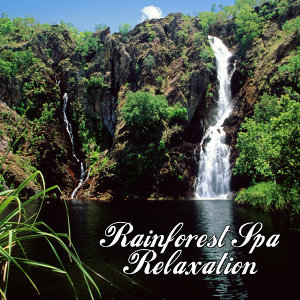 The Rainforest Spa Players アーティスト写真