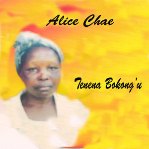 Alice  Chae 歌手頭像
