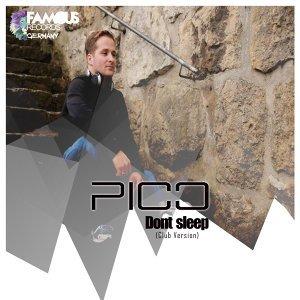 Pico アーティスト写真