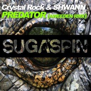 Crystal Rock & Shwann 歌手頭像