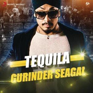 Gurinder Seagal 歌手頭像