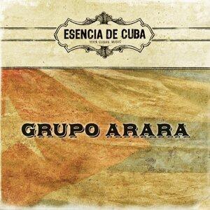 Grupo Arara 歌手頭像