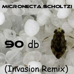 Micronecta Scholtzi 歌手頭像