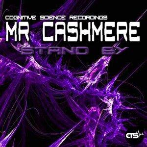 Mr.Cashmere