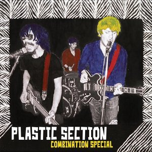 Plastic Section
