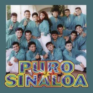 Puro Sinaloa 歌手頭像