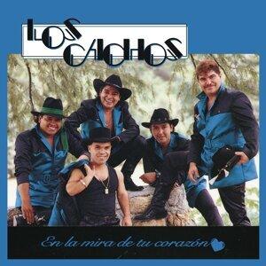 Los Cachos アーティスト写真